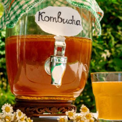 kombucha-que-es